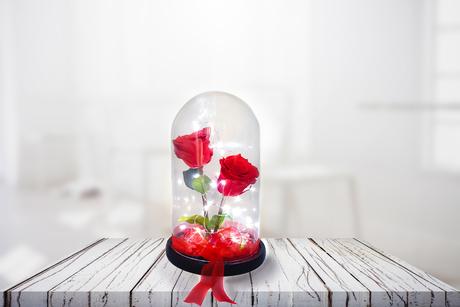 Παντοτινά τριαντάφυλλα