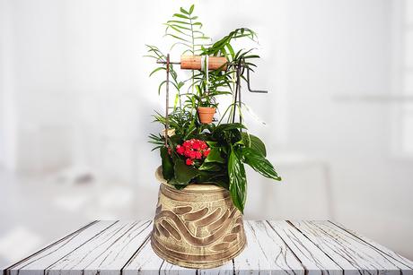 Μεγάλο πηγαδάκι λουλουδιών